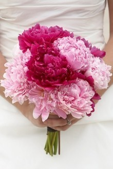 Perfect Pink Bridesmaid Bouquet