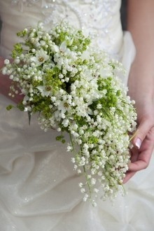 Sheer Elegant Lily of the Valley